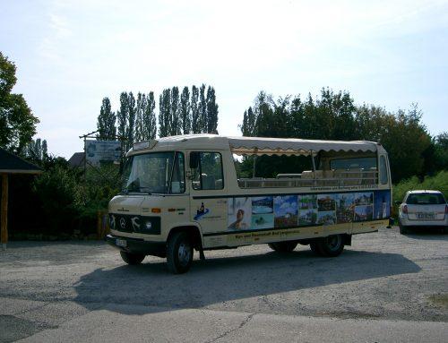 Schwälbchentour – Zu Besuch bei Frau Holle …
