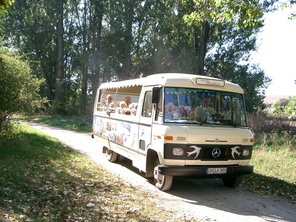 Schwälbchentour - Herrlicher Thüringer Wald