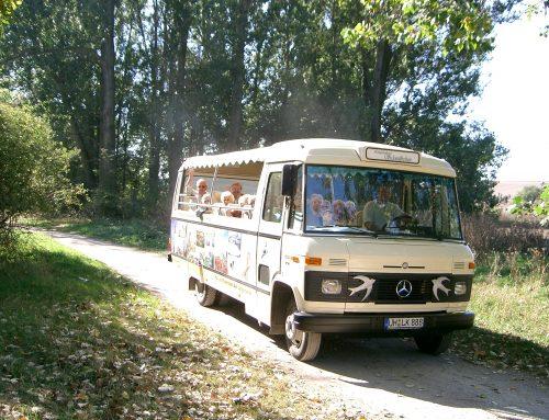 Schwälbchentour – Herrlicher Thüringer Wald